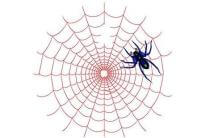 培养网站与搜索引擎蜘蛛的感情