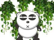 谷歌的熊猫算法如何进行高质量内容的判断